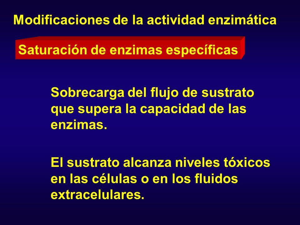 Modificaciones de la actividad enzimática