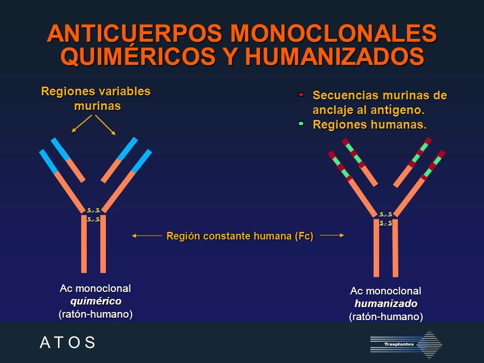 ANTICUERPOS MONOCLONALES QUIMÉRICOS Y HUMANIZADOS