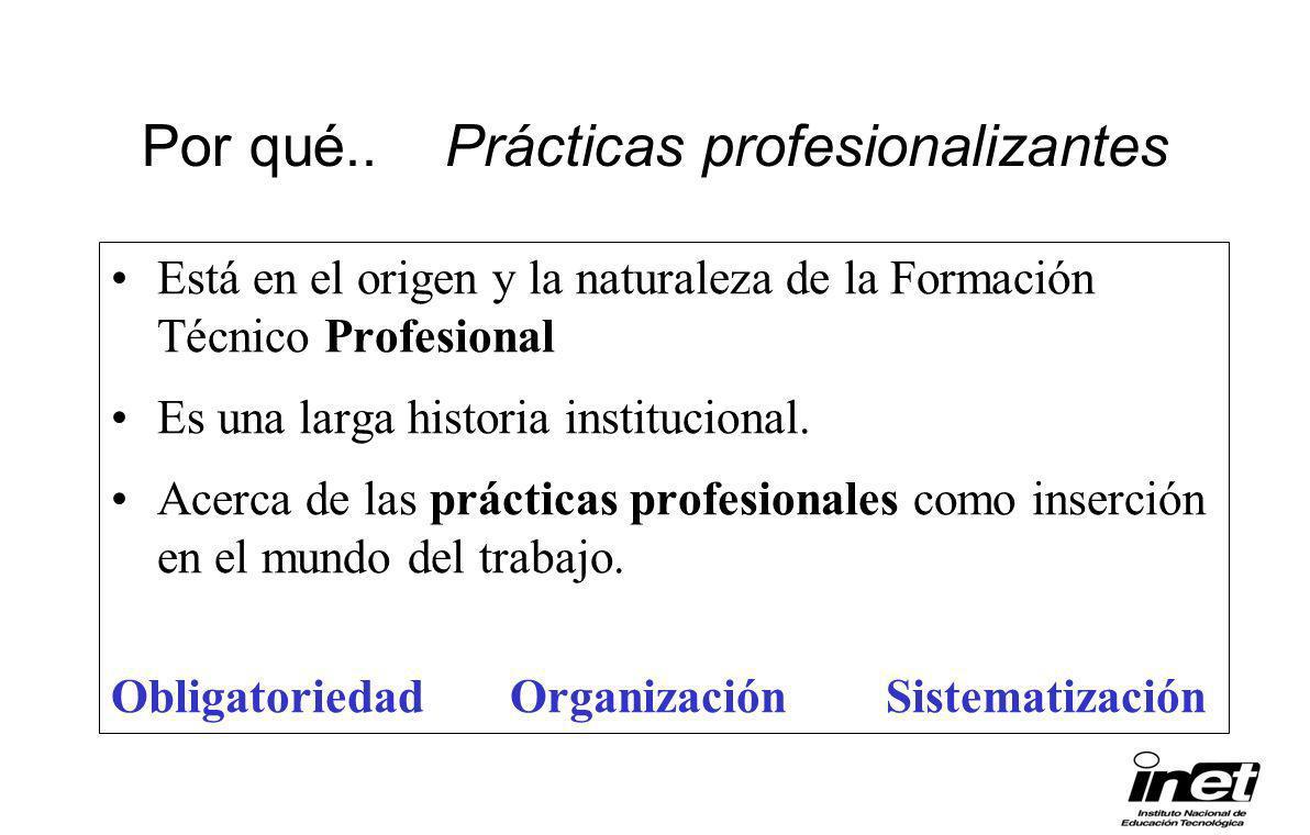 Por qué.. Prácticas profesionalizantes