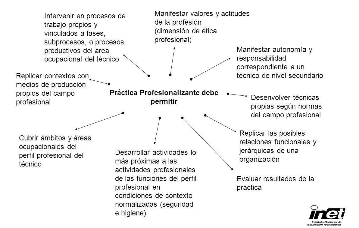 Práctica Profesionalizante debe permitir