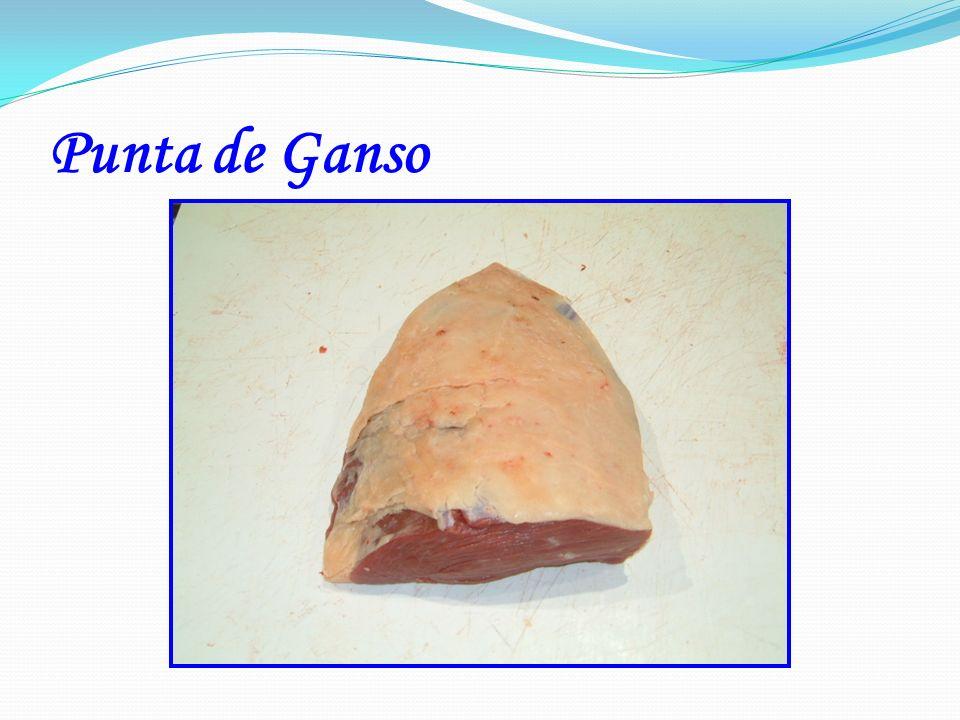 Punta de Ganso