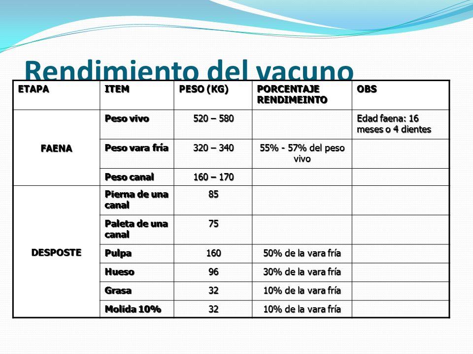 Rendimiento del vacuno