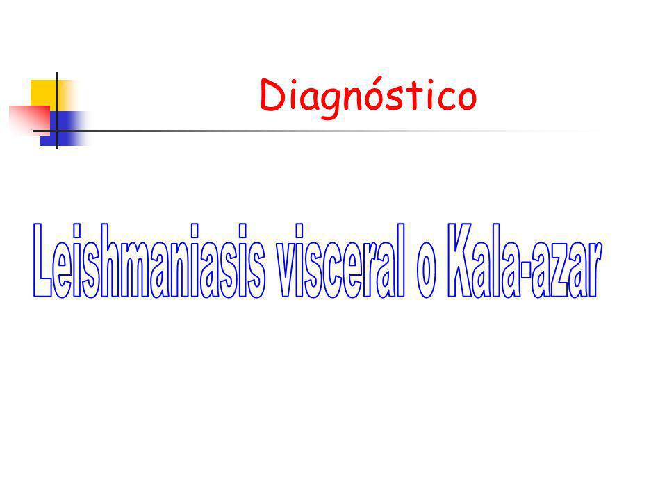 Leishmaniasis visceral o Kala-azar
