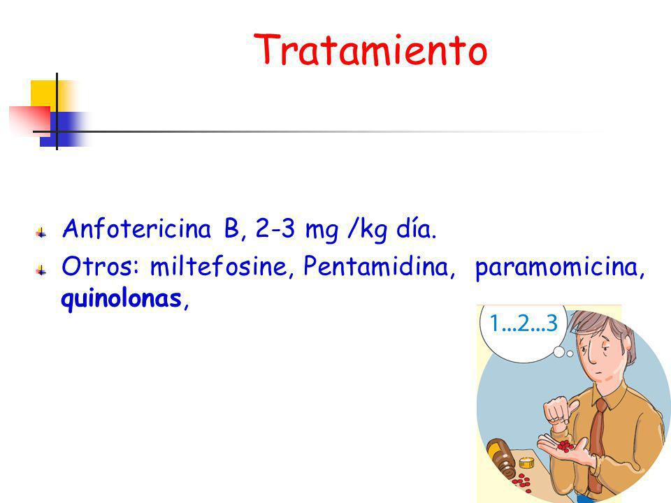 Tratamiento Anfotericina B, 2-3 mg /kg día.