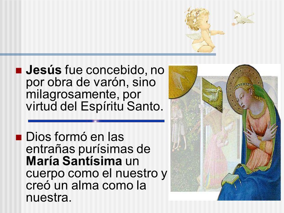 Jesús fue concebido, no por obra de varón, sino milagrosamente, por virtud del Espíritu Santo.