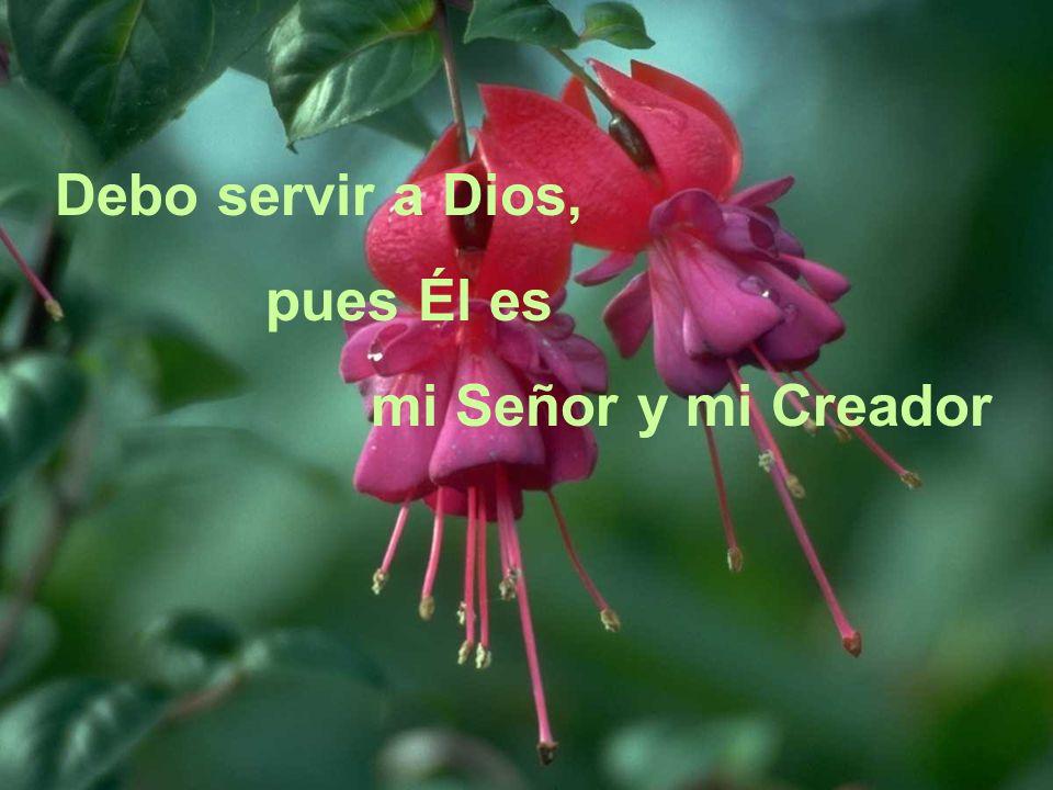 Debo servir a Dios, pues Él es mi Señor y mi Creador