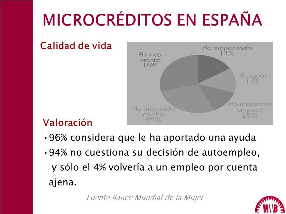 MICROCRÉDITOS EN ESPAÑA