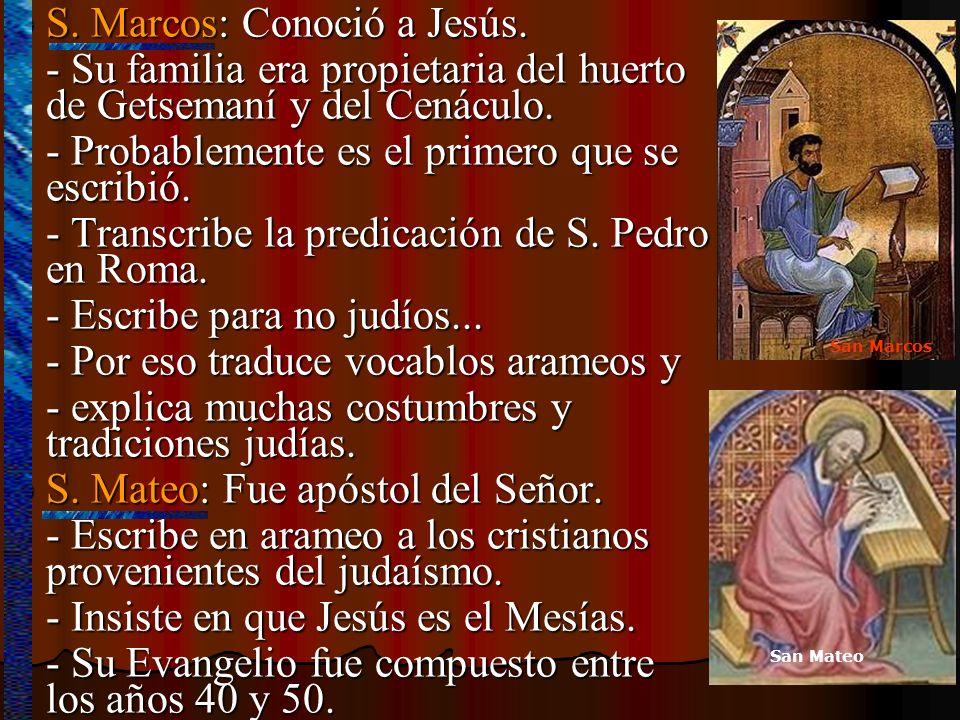 S. Marcos: Conoció a Jesús.