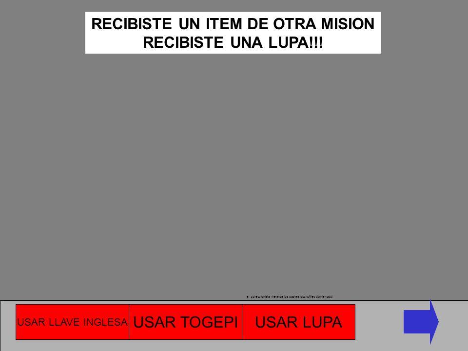RECIBISTE UN ITEM DE OTRA MISION
