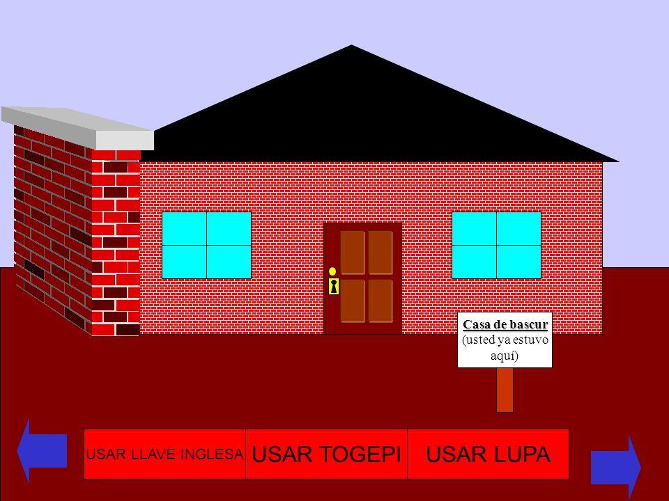 USAR TOGEPI USAR LUPA USAR LLAVE INGLESA Casa de bascur