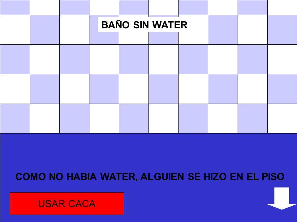 COMO NO HABIA WATER, ALGUIEN SE HIZO EN EL PISO