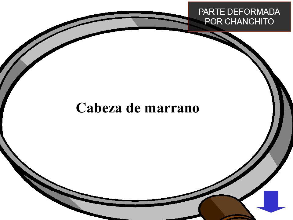 PARTE DEFORMADA POR CHANCHITO Cabeza de marrano