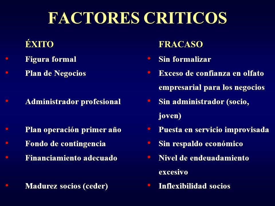 FACTORES CRITICOS ÉXITO FRACASO Figura formal Plan de Negocios