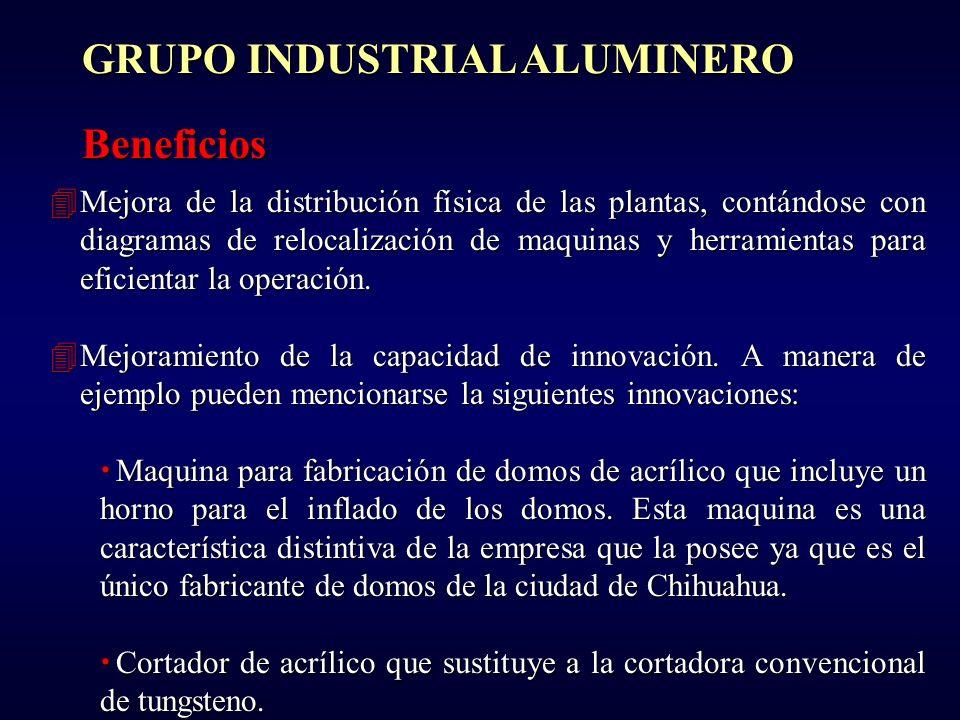 GRUPO INDUSTRIAL ALUMINERO