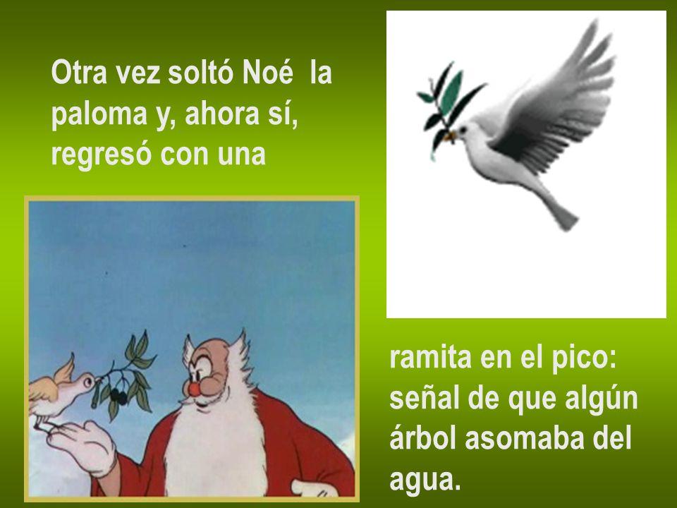 Otra vez soltó Noé la paloma y, ahora sí, regresó con una. ramita en el pico: señal de que algún.