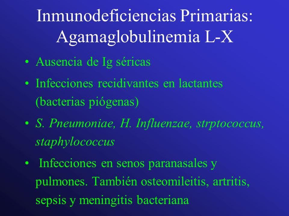 Inmunodeficiencias Primarias: Agamaglobulinemia L-X