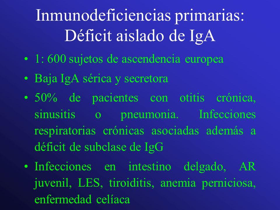 Inmunodeficiencias primarias: Déficit aislado de IgA