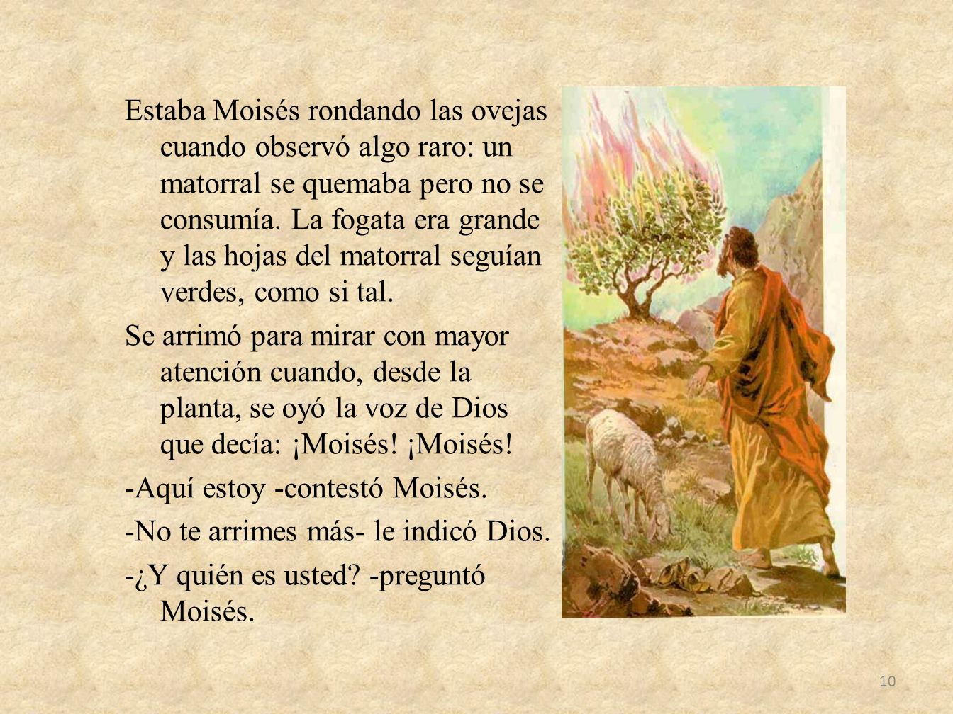 Estaba Moisés rondando las ovejas cuando observó algo raro: un matorral se quemaba pero no se consumía.