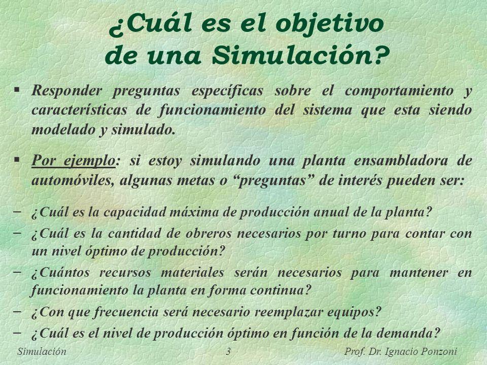 ¿Cuál es el objetivo de una Simulación