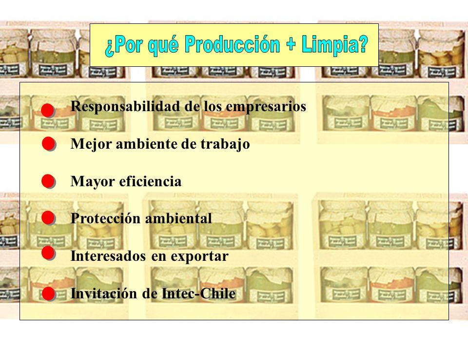 ¿Por qué Producción + Limpia