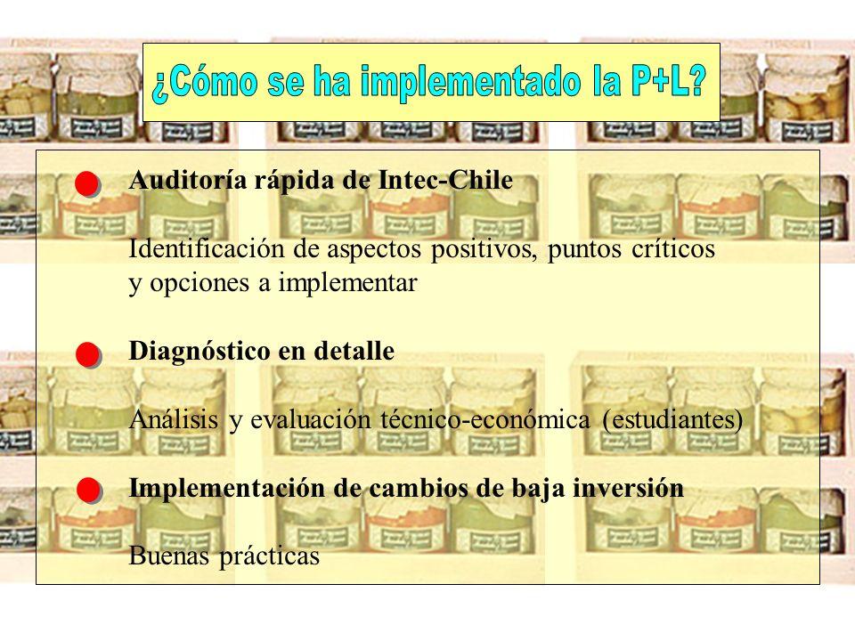 ¿Cómo se ha implementado la P+L