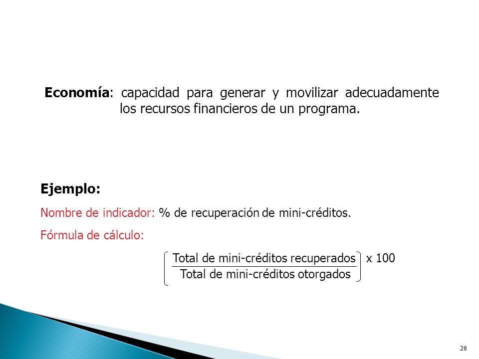 Economía: capacidad para generar y movilizar adecuadamente los recursos financieros de un programa.
