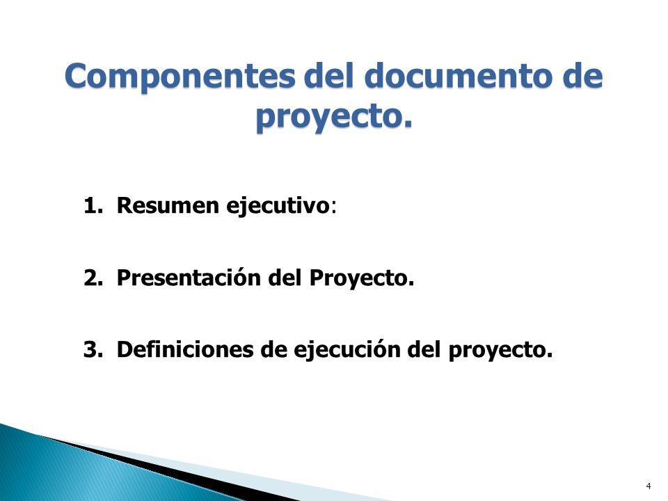 Componentes del documento de proyecto.