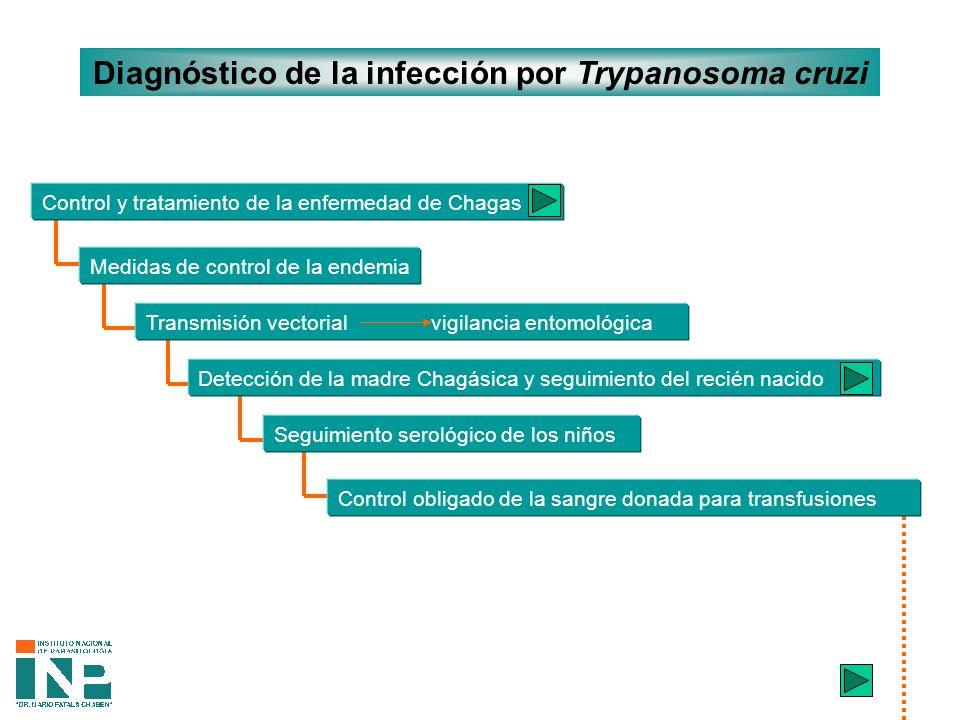 Diagnóstico de la infección por Trypanosoma cruzi