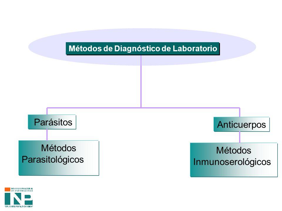 Parásitos Anticuerpos Métodos Métodos Parasitológicos