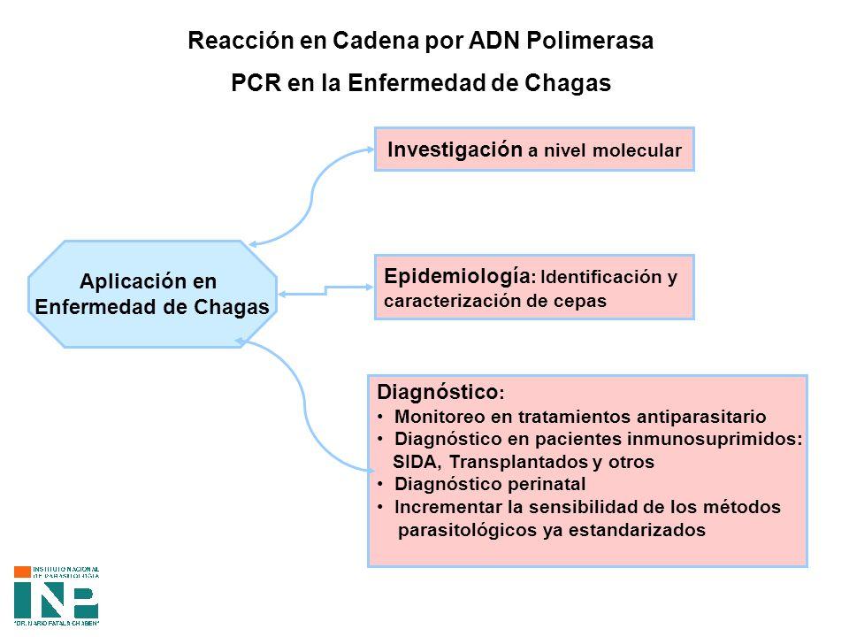 Reacción en Cadena por ADN Polimerasa PCR en la Enfermedad de Chagas