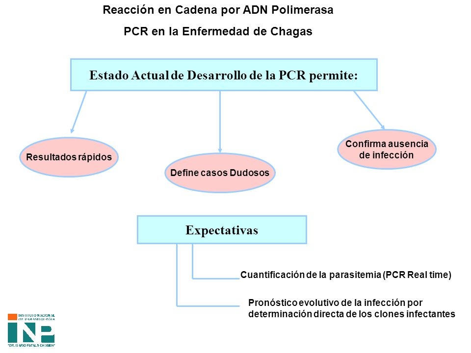 Estado Actual de Desarrollo de la PCR permite: Expectativas
