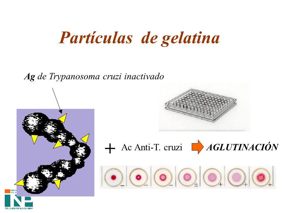 Partículas de gelatina