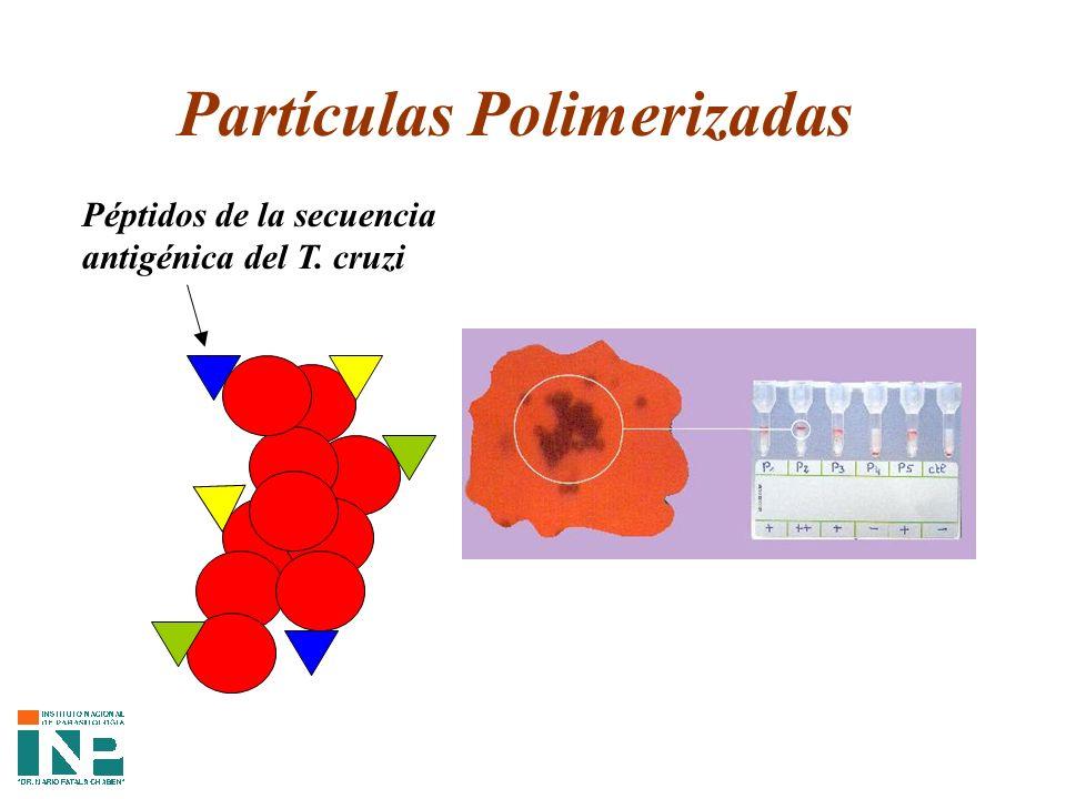 Partículas Polimerizadas