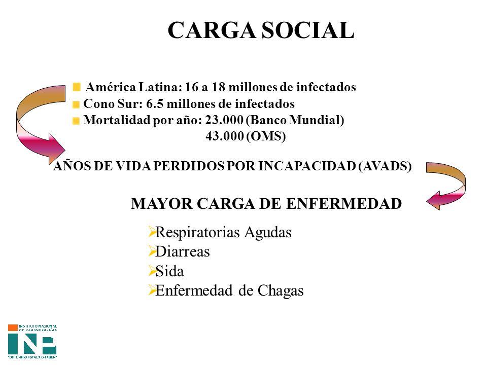 CARGA SOCIAL América Latina: 16 a 18 millones de infectados