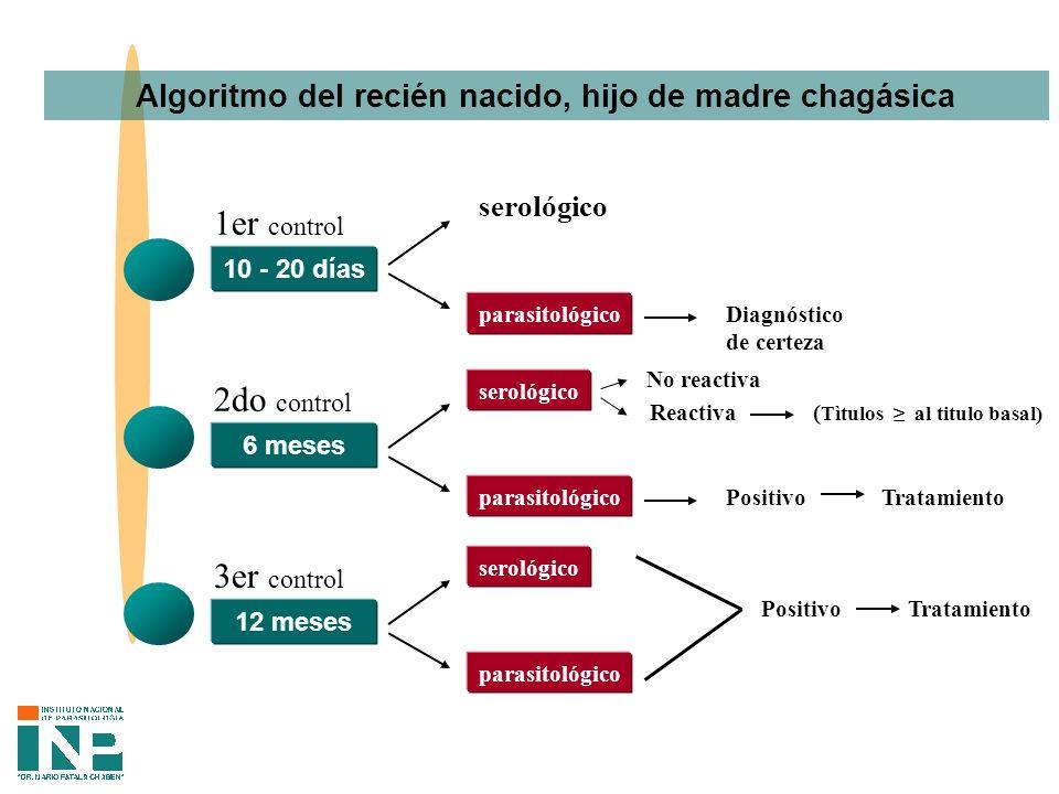 Algoritmo del recién nacido, hijo de madre chagásica