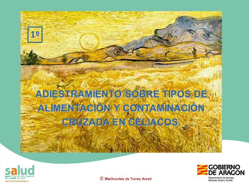1º ADIESTRAMIENTO SOBRE TIPOS DE ALIMENTACIÓN Y CONTAMINACIÓN CRUZADA EN CELIACOS.