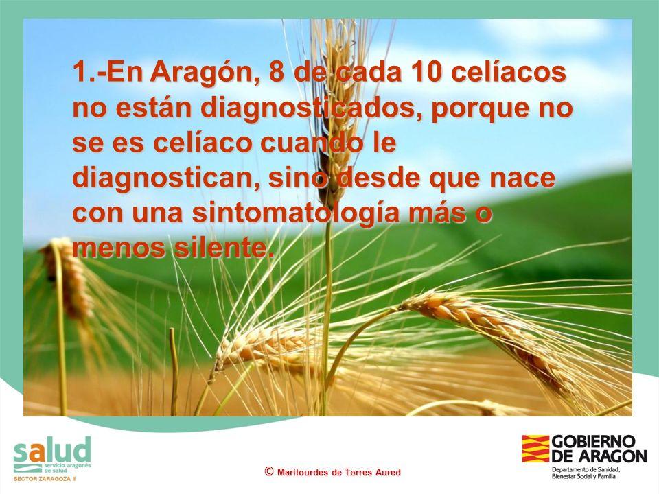 1.-En Aragón, 8 de cada 10 celíacos no están diagnosticados, porque no se es celíaco cuando le diagnostican, sino desde que nace con una sintomatología más o menos silente.