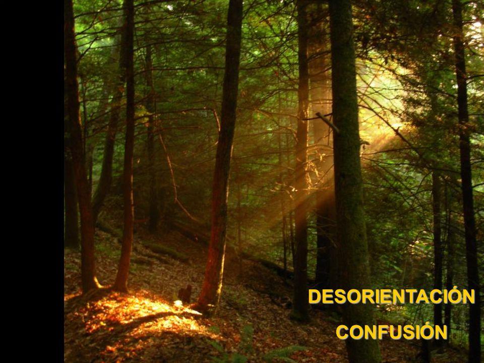 DESORIENTACIÓN CONFUSIÓN