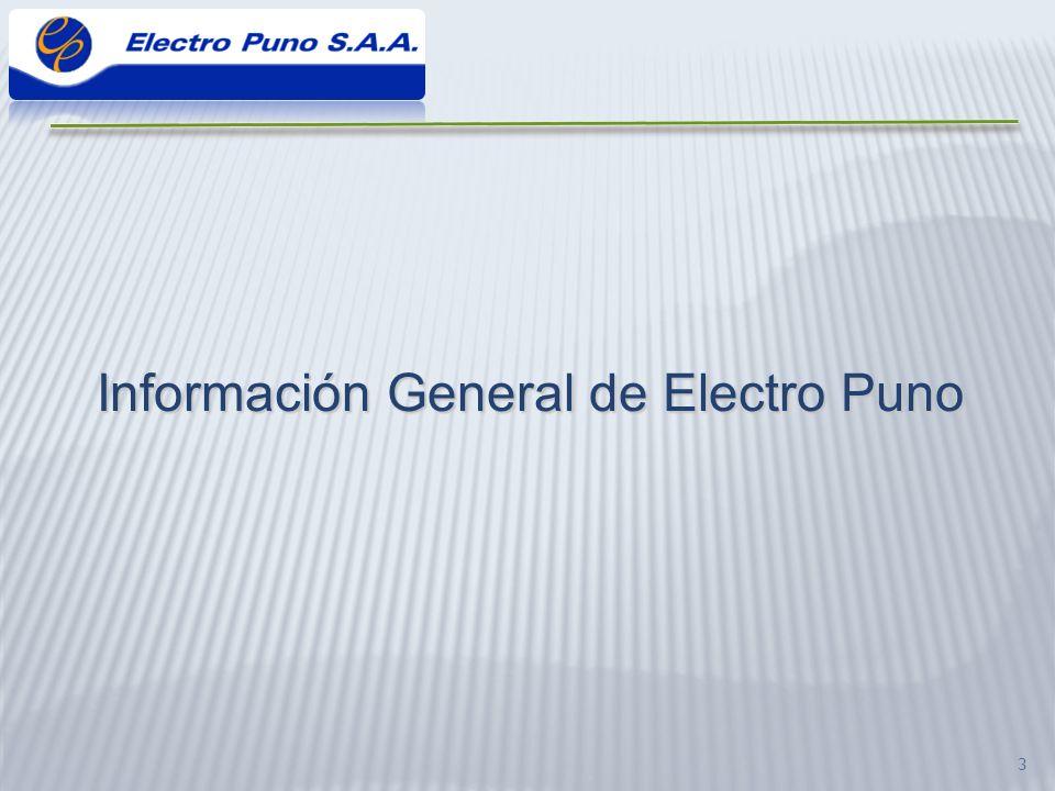Información General de Electro Puno