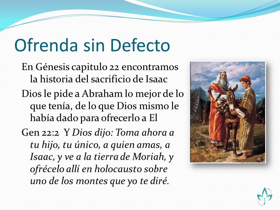 Ofrenda sin Defecto