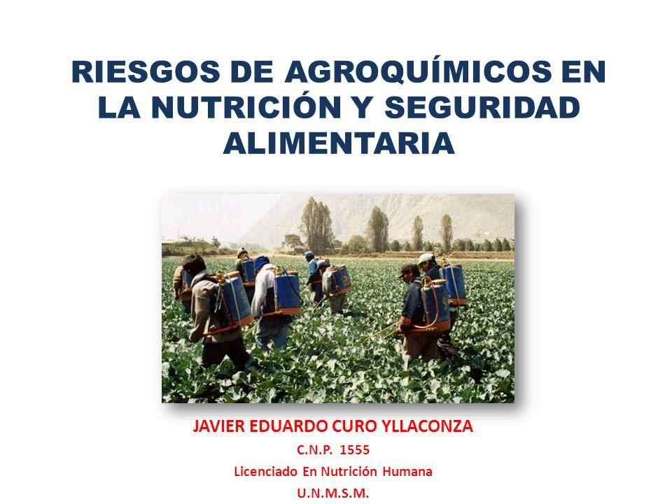 JAVIER EDUARDO CURO YLLACONZA Licenciado En Nutrición Humana