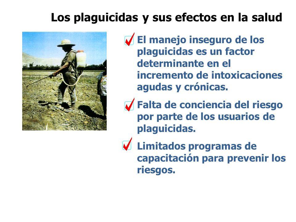 Los plaguicidas y sus efectos en la salud