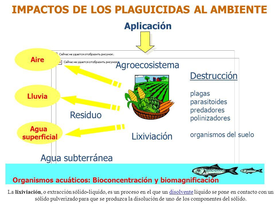 IMPACTOS DE LOS PLAGUICIDAS AL AMBIENTE
