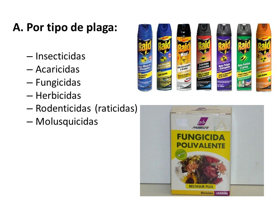 A. Por tipo de plaga: Insecticidas Acaricidas Fungicidas Herbicidas