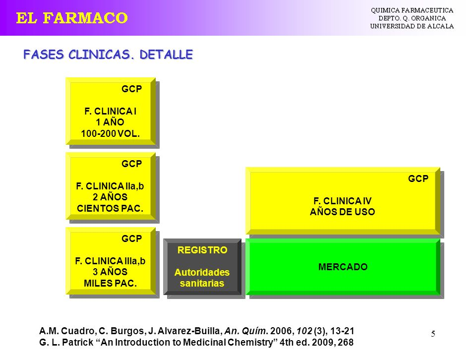 FASES CLINICAS. DETALLE