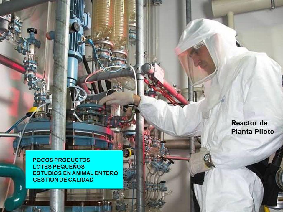 Reactor de Planta Piloto POCOS PRODUCTOS LOTES PEQUEÑOS