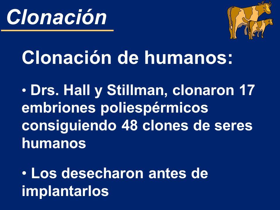 Clonación de humanos: Los desecharon antes de implantarlos