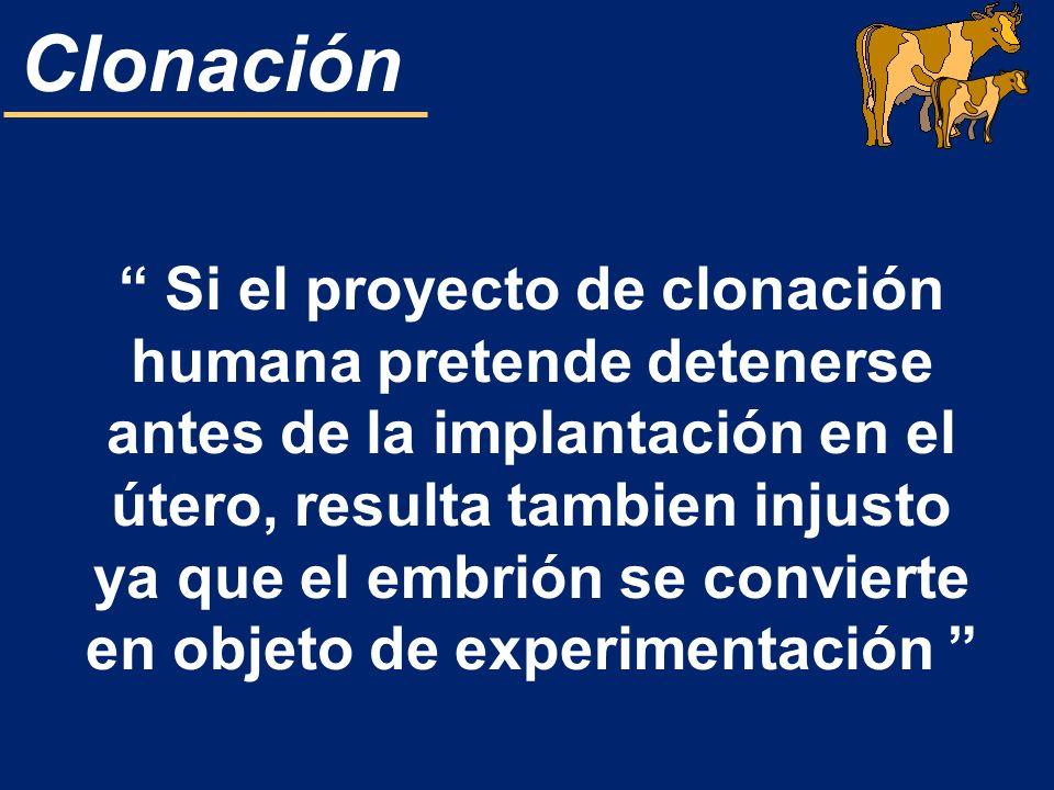 Si el proyecto de clonación humana pretende detenerse antes de la implantación en el útero, resulta tambien injusto ya que el embrión se convierte en objeto de experimentación