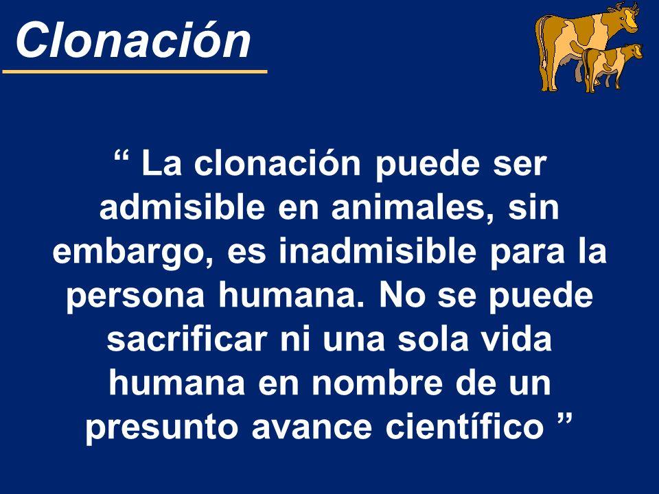 La clonación puede ser admisible en animales, sin embargo, es inadmisible para la persona humana. No se puede sacrificar ni una sola vida humana en nombre de un presunto avance científico