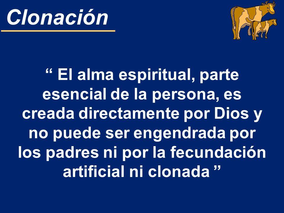 El alma espiritual, parte esencial de la persona, es creada directamente por Dios y no puede ser engendrada por los padres ni por la fecundación artificial ni clonada